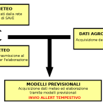 modello previsionale patologie del vigneto schema
